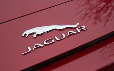 Roller Garage Doors – a Jaguar Owners Story